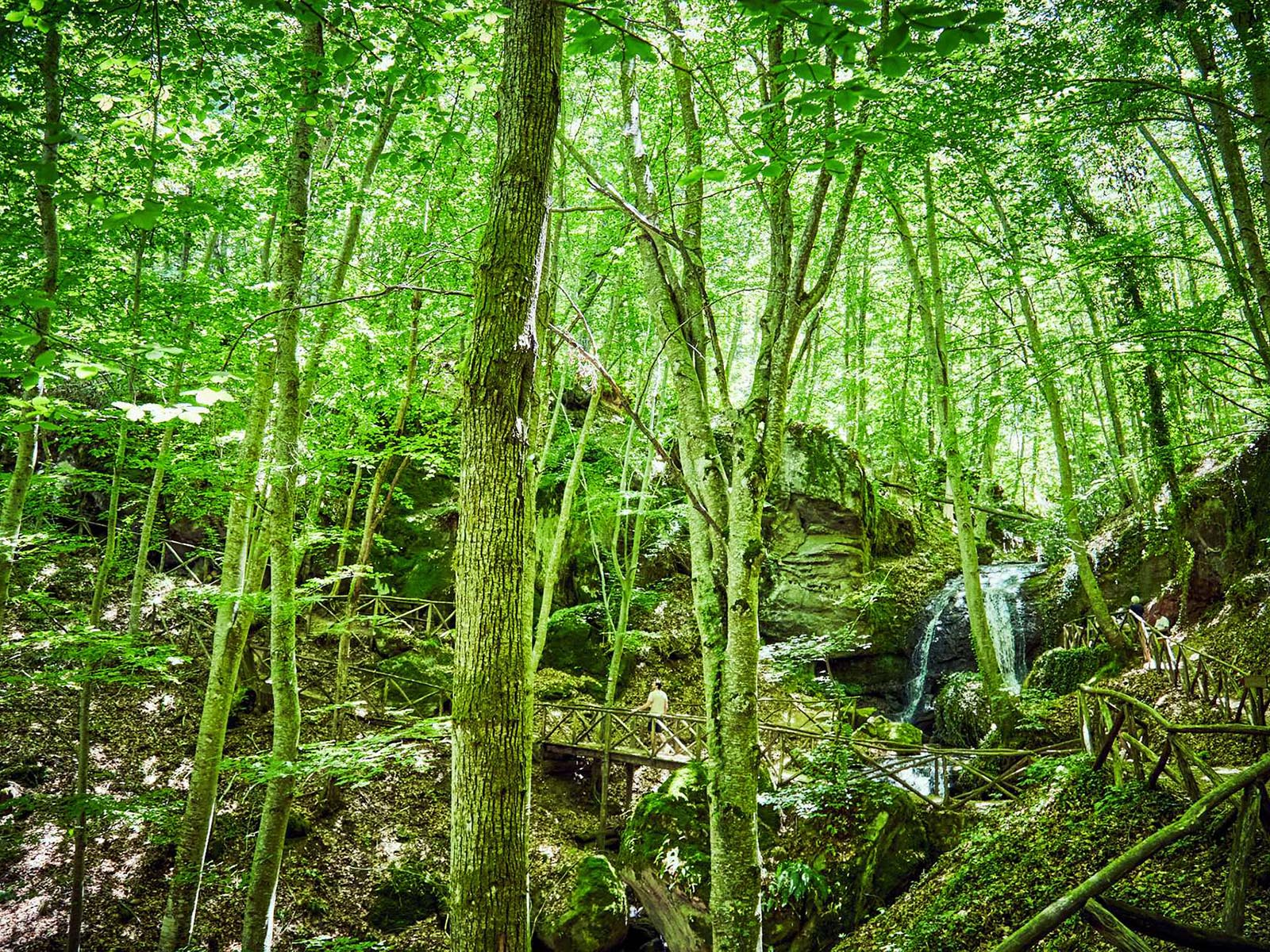 Siti d'interesse ambientale